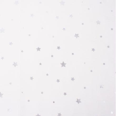 Плащівка сріблясті зірки на молочному №2