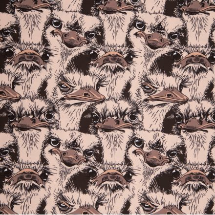 Канада страуси (плащівка)